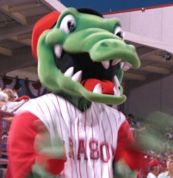 Sarasota Reds Ralli Gator
