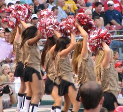 Cheerleaders in sexy camouflage